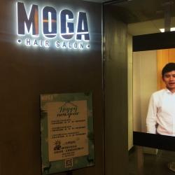 MOGA造型工作环境