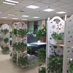 上海澎江商务咨询有限公司工作环境