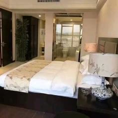 湄水湾中式大酒店酒店客服工作环境